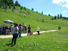 set_in_Val_di_Fassa-1